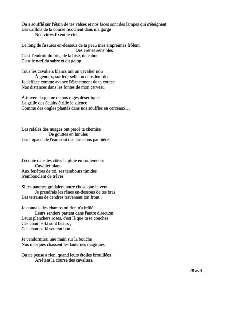 Cavalier blanc (2)