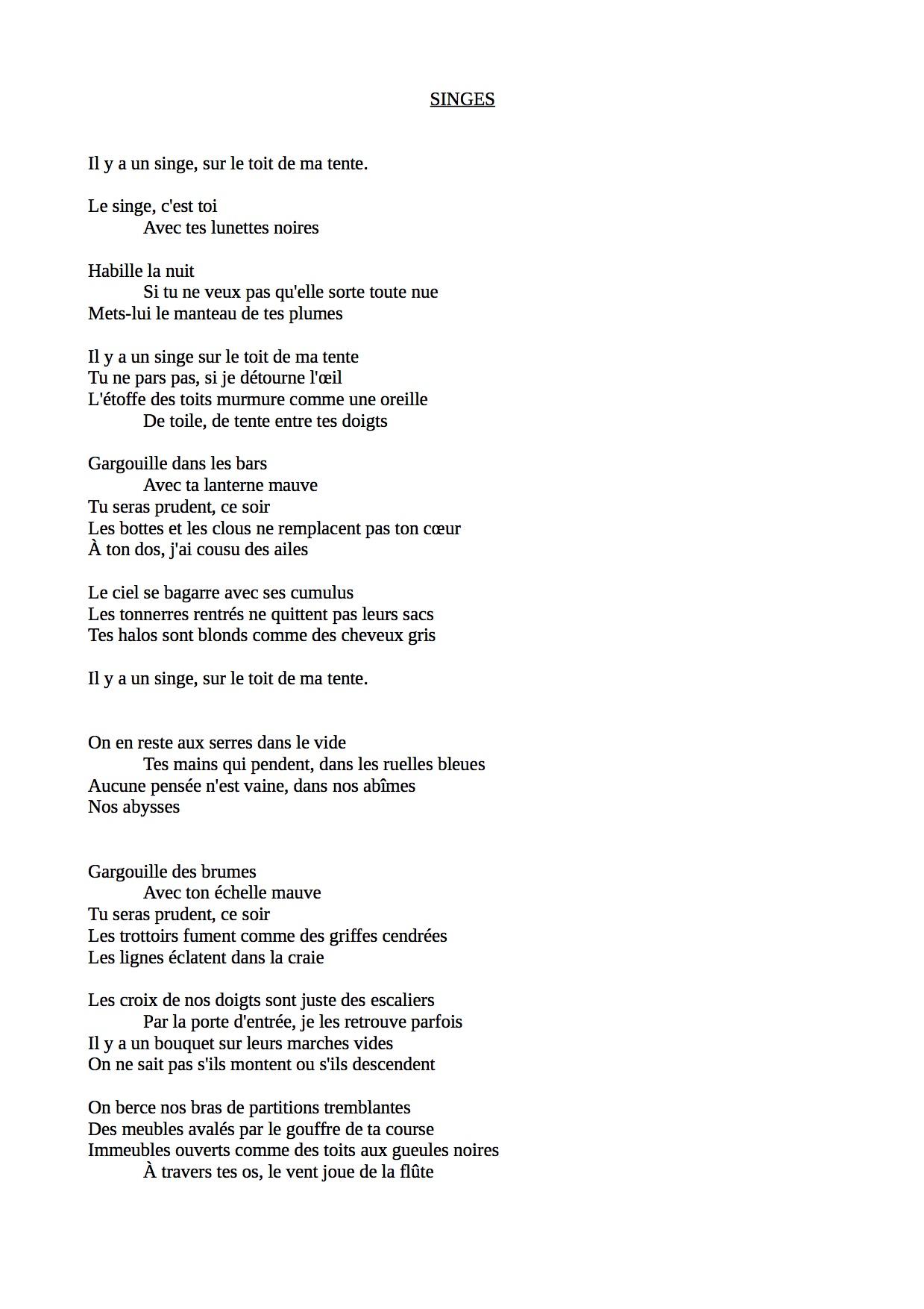 Singes (1)