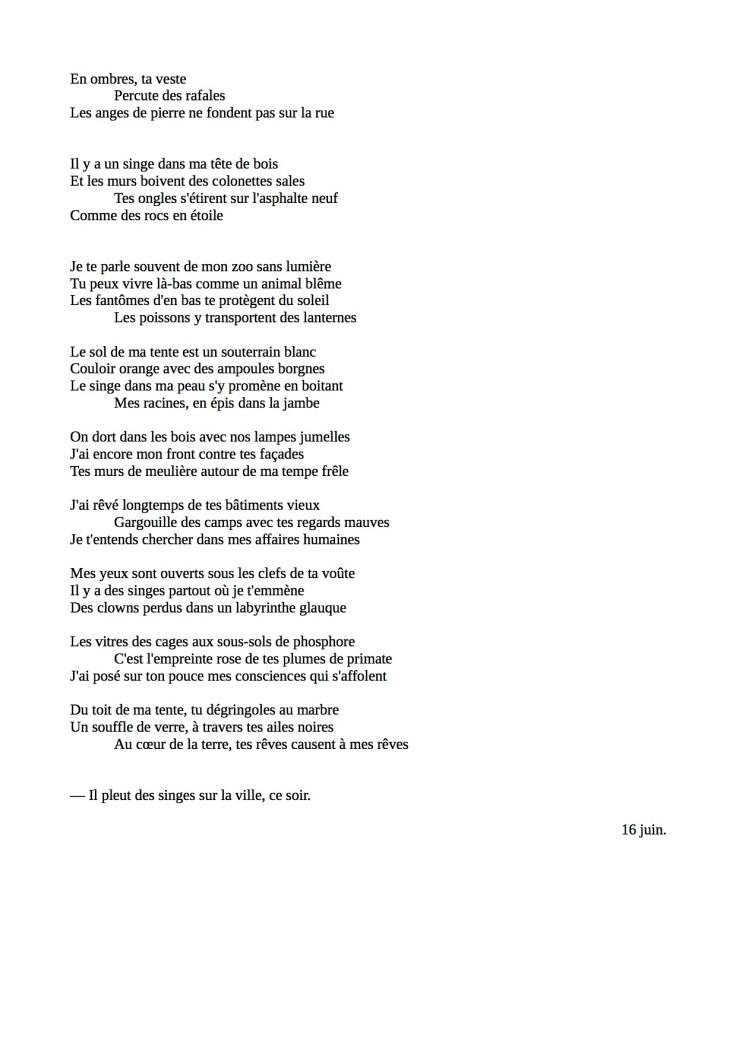 Singes (2)
