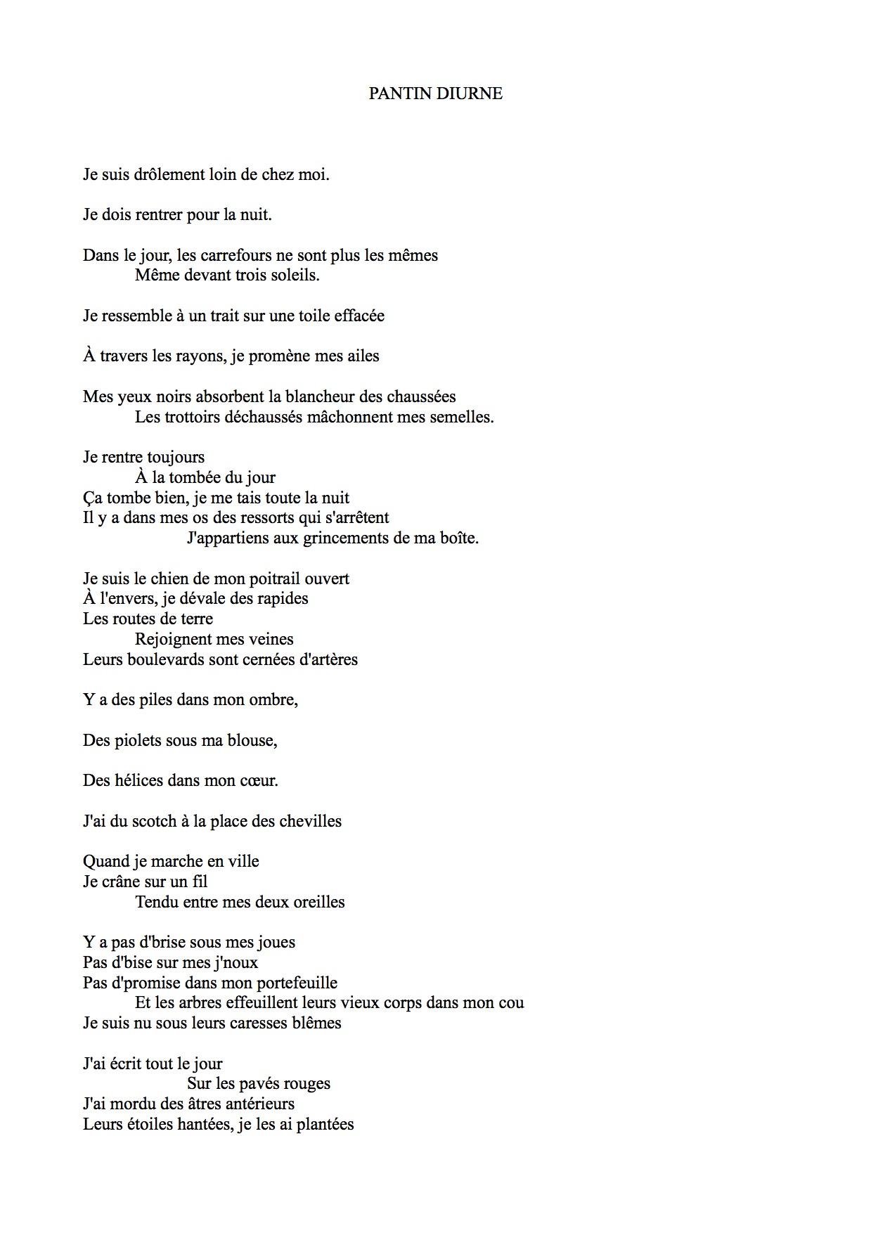 PANTIN DIURNE (1)